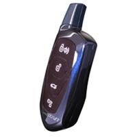 -  Compustar Two Way LED Remote VA5JR961A915